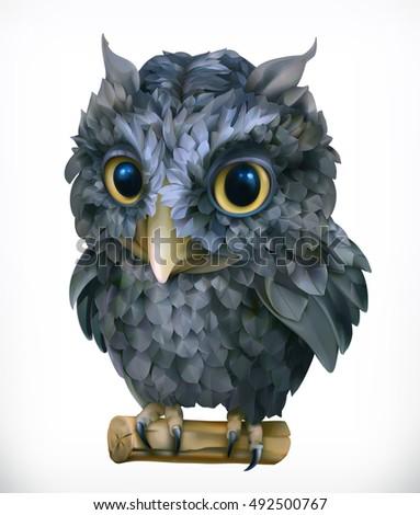 owl  night bird funny animal