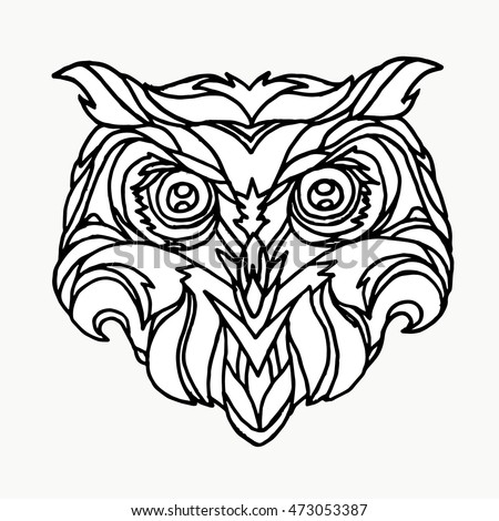 owl on a white background