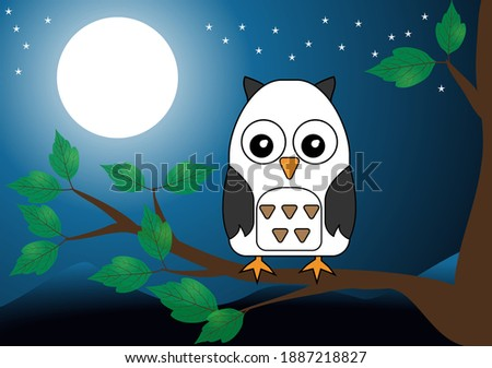 owl perched on tree at night