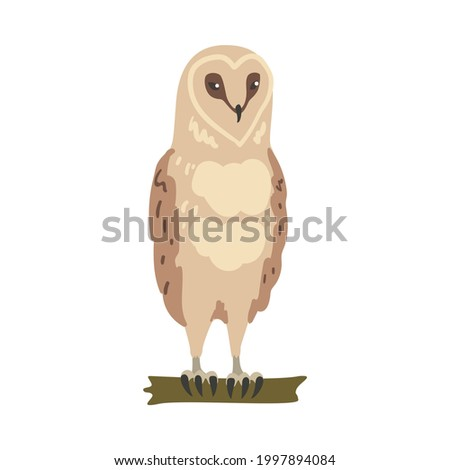 Owl Specie as Nocturnal Bird of Prey with Hawk-like Beak and Forward-facing Eyes Perching on Tree Branch Vector Illustration Сток-фото ©