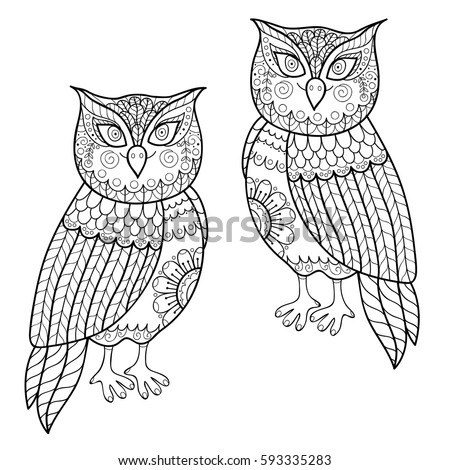 Owl vector illustration. Coloring page with hand drawn owls. Black and white pattern.