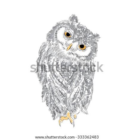 owl were drawn by hand owl