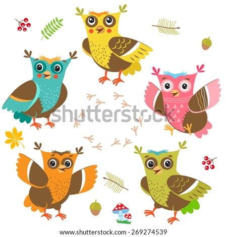 owlet baby cartoon owl