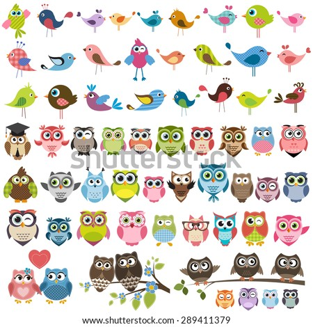 owls and birds set