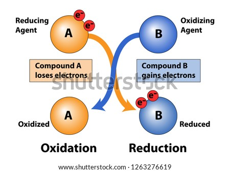 Oxidation and Reduction in loss and gain of electrons in compounds. Showing reducing agent and oxidizing agent. Foto d'archivio ©