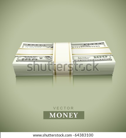 packaged bundle of money dollars vector illustration