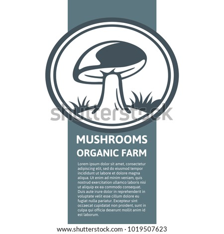 Packaging design element with the image of a mushroom flat logo. There is place for product description. Vector logo template design porcini mushroom farm