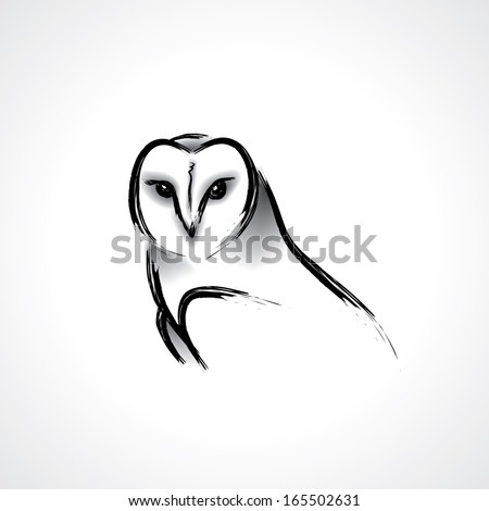 painted barn owl   vector