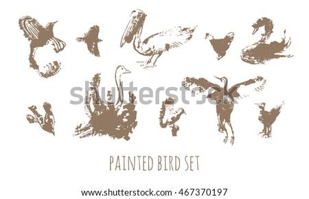 painted bird vector set