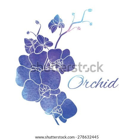 Painted Purple Watercolor Orchids Stock Vector ...
