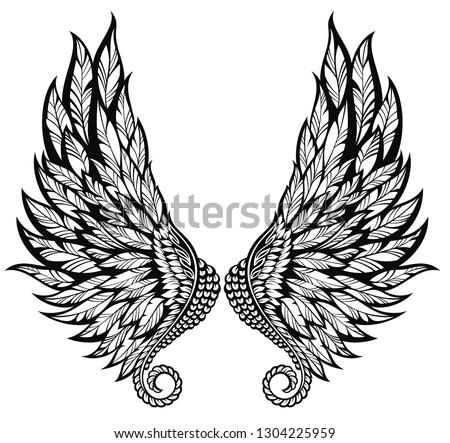 Pair of  angel wings