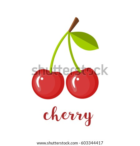 Pair of cherries, isolated vector illustration