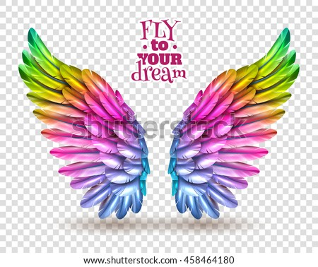 Stock Photo Pair of colorful bird wings set isolated on transparent background with shadow flat vector illustration