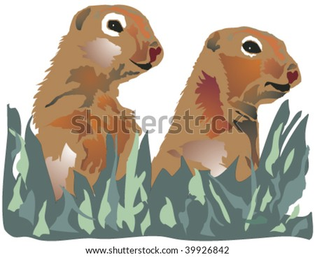 pair of marmots gazing out from