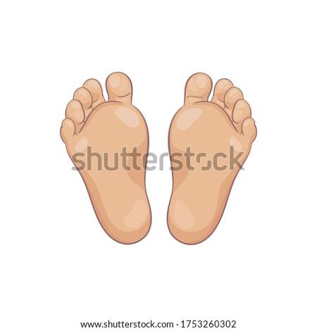 pair of newborn baby foot soles