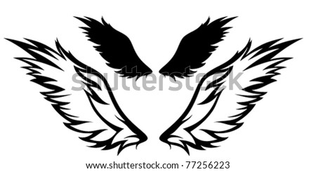 pair of wings vector illustration
