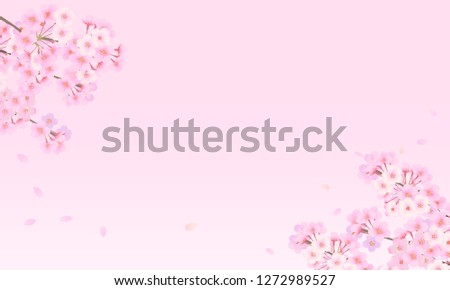 pale colored cherry background
