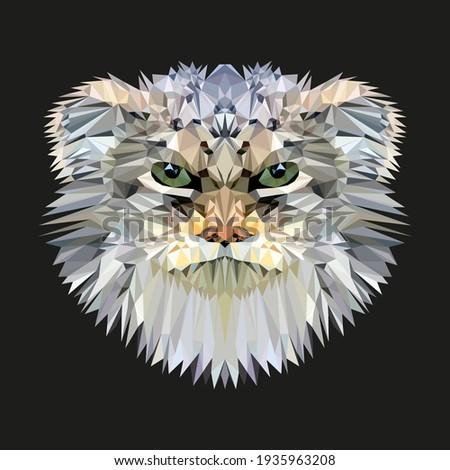 Pallas cat, manul low poly design. Triangle vector illustration. Foto d'archivio ©