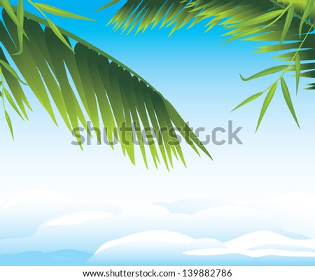 palm branches on the cloudscape