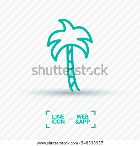 palm isolated minimal single