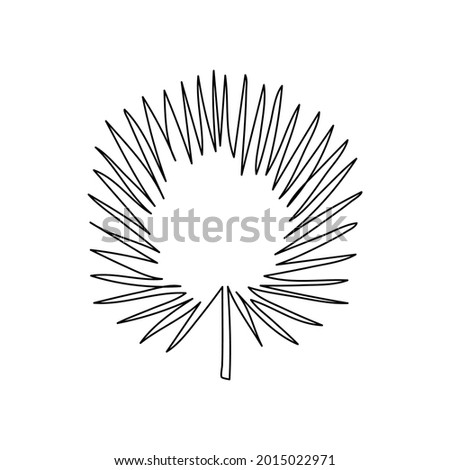 Palm leaf continuous line drawing. One line art of leaves, plants, herb,Tropical leaves, botanica. Foto d'archivio ©