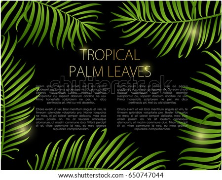 Palm leaf vector background. Green leaves on black background with place for your text.