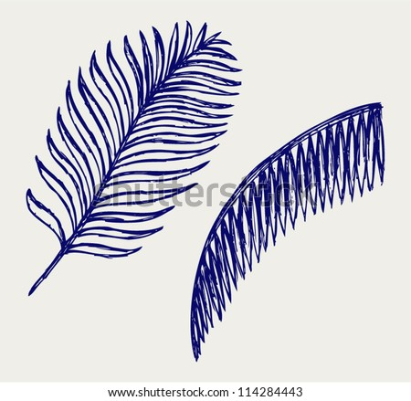 Palm leaves. Doodle style