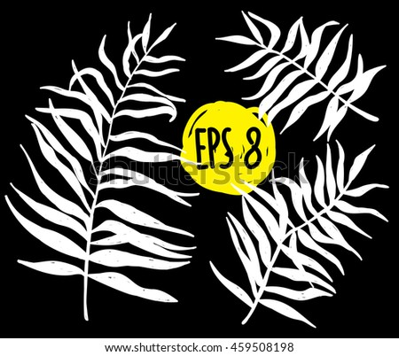 palm leaves  set of vector