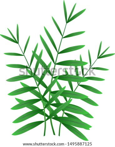 Palm leaves. Tropical leaves. Jungle leaves. Summer leafs.,