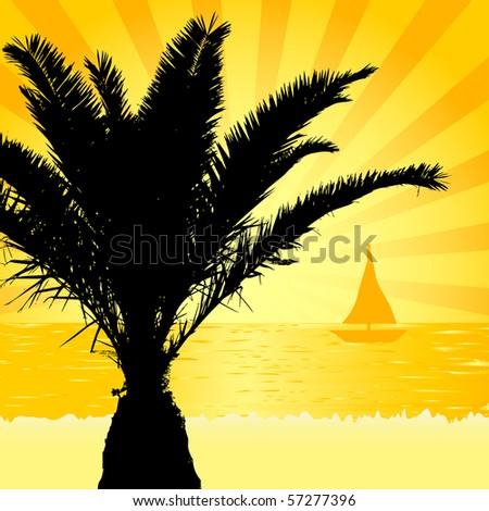 Palm silhouette on the beach