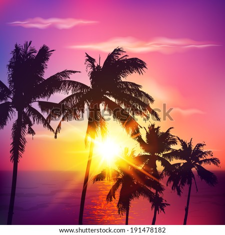 palm silhouettes on summer