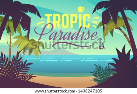 palm tree beach ocean sunset