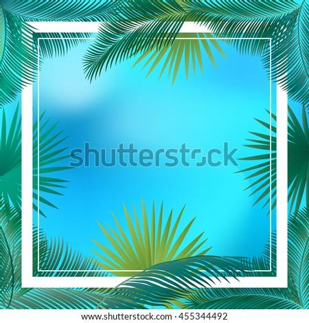 palm tree frame palm leaf