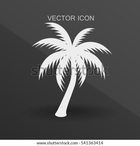 palm tree icon vector illustration