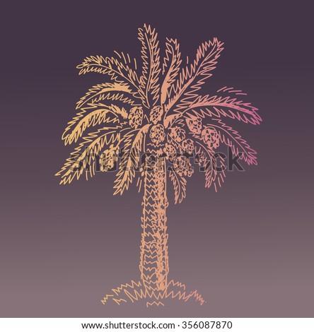 Fabulous palm trees vector photographs