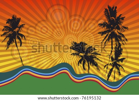 palm trees and sunset in a