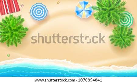 palm trees  beach mat sun