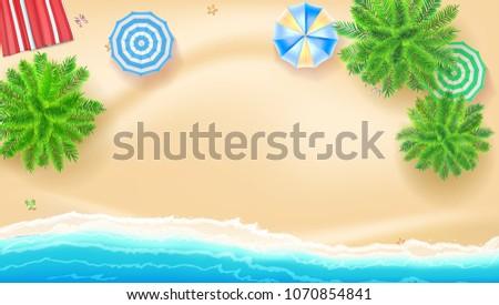 palm trees  beach mat sun