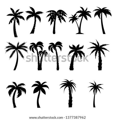 Palm trees black silhouettes set
