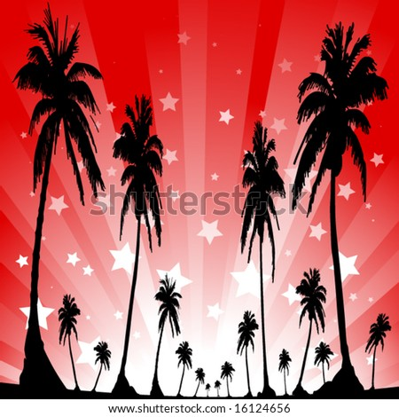 palm trees in front of a star