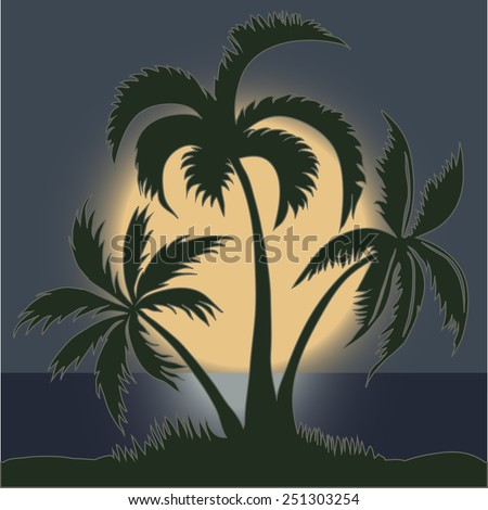 palm trees in the moonlight on
