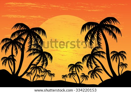 palm trees silhouette on the