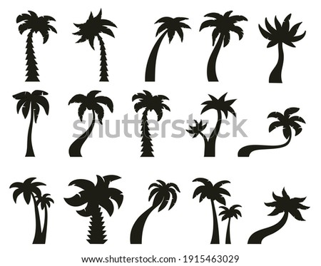 Palm trees silhouettes. Tropical botany, hawaiian coconut palm vintage silhouettes. Exotic green trees vector illustration set. Silhouette tree palm with leaf, beach plant