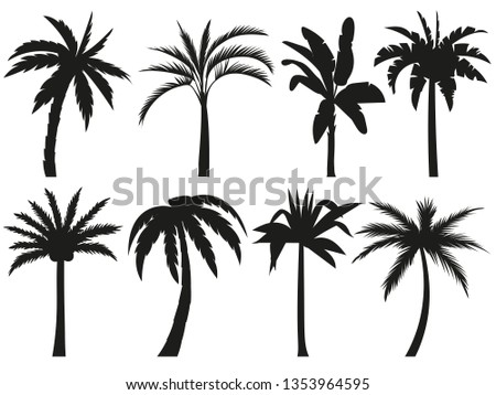 Palm trees silhouettes. Tropical leaves, retro palms tree and vintage silhouettes. Coconut palm, exotic lush sketch or hawaii coco palms. Vector illustration isolated icons set