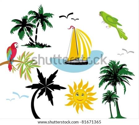 Palms exotic. Elements for design. Vector illustration.