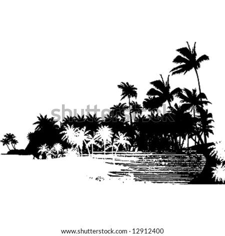palms forest landscape