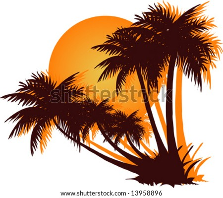Palms on the white background