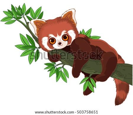 panda on a tree branch