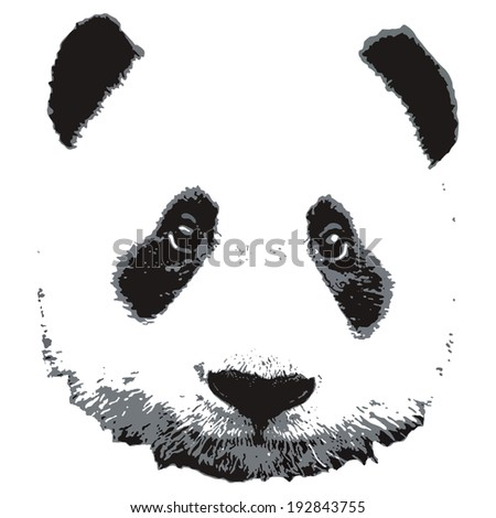 panda painting head white background