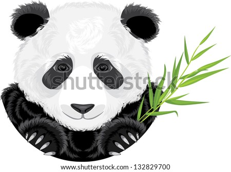stock-vector-panda-with-bamboo-branch-ve